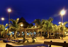 Puerto Morelos night palm trees Mayan riviera Stock Photo
