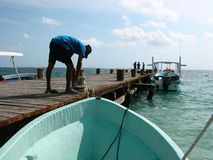 Puerto Morelos, Quintana Roo, Mexiko, 02 Stockbild