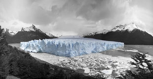 Puerto moreno glacier. Black and white image of the puerto moreno glacier with the glacier true blue still in color Royalty Free Stock Photos