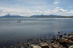 Puerto Natales, Chile Stockbild
