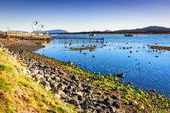 Puerto Natales, Chile, South America Royalty Free Stock Image