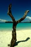 Puerto Olry Imagen de archivo libre de regalías