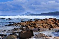 Puerto Plata Fotografering för Bildbyråer