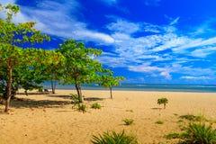 Tropical Caribbean Beach royalty free stock photos
