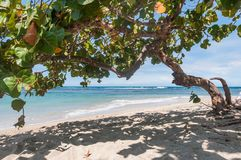 Puerto Plata beach in northen side of ocean. Wonderful beach on north side of dominican republic Stock Photos