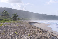 Puerto Rican beach Stock Photo