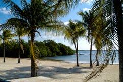 Puerto Rico Beach på solig dag Fotografering för Bildbyråer
