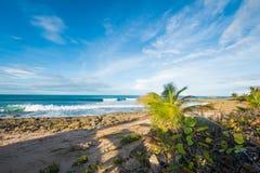 Puerto Rico Beach Scene royalty-vrije stock afbeeldingen