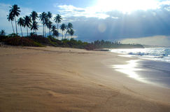 Puerto Rico Carribean Sand Beach and Palm Trees next to the Sea. With waves on a sunny day Stock Photography