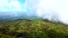 Puerto Rico El Yunque National Forest stock video