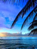 Puerto Rico Sunset. Beautiful sunset framed by palm fronds on the west coast of Puerto Rico Stock Photos