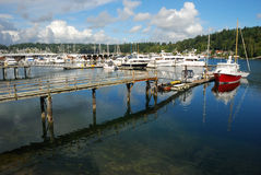 Puerto Seattle Washington del carruaje imágenes de archivo libres de regalías
