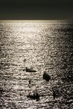 Silhouette of two men/boys on stand up paddle boards amongst sma royalty free stock photo