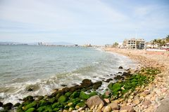 Puerto Vallarta Shore Stock Image
