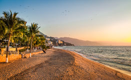 Puerto Vallarta sunset and palms - Puerto Vallarta, Jalisco, Mexico Stock Images
