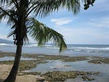Puerto Viejo, Коста-Рика Стоковое фото RF
