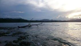 Puerto Viejo, ³ n, Costa Rica di Limà immagine stock