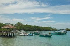 Puerto Villamil in Isabela Island Isole Galapagos Fotografia Stock Libera da Diritti