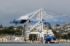 Puertos de Auckland Imagenes de archivo