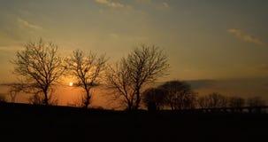 Puesta del sol, árbol, silueta, cielo, Caserta, Italia Fotos de archivo libres de regalías