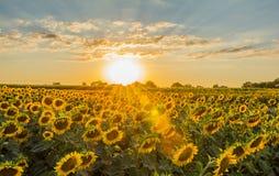 Puesta del sol Fotografía de archivo