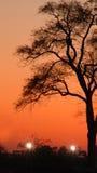 Puesta del sol 1079 del poste Fotografía de archivo libre de regalías