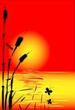 Puesta del sol abstracta Fotografía de archivo libre de regalías