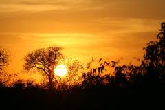 Puesta del sol africana Imágenes de archivo libres de regalías
