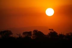 Puesta del sol africana Fotografía de archivo