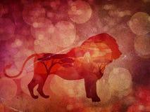 Puesta del sol africana con Lion Grunge Imagen de archivo libre de regalías