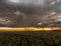 Puesta del sol africana en el Maasai Mara Imagen de archivo