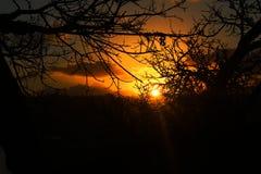 Puesta del sol agrietada fotografía de archivo libre de regalías