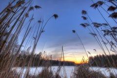 Puesta del sol alrededor del lago del invierno Foto de archivo libre de regalías