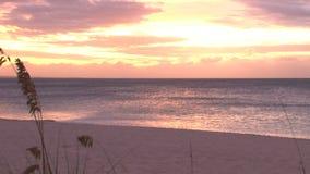 Puesta del sol amarilla y roja sobre la playa brillante del océano almacen de video