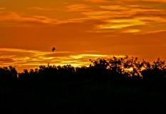 Puesta del sol anaranjada Imagen de archivo