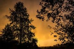Puesta del sol anaranjada Fotos de archivo