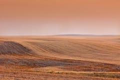Puesta del sol anaranjada de color salmón en campos vacíos Foto de archivo