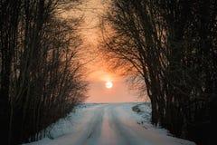 Puesta del sol anaranjada en el camino nevoso del campo Fotos de archivo libres de regalías