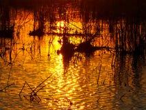 Puesta del sol anaranjada que refleja en el río Zambezi fotos de archivo libres de regalías
