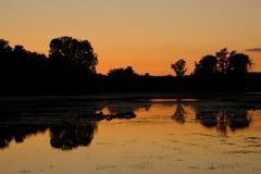 Puesta del sol anaranjada reflejada en el lago michigan con los árboles silueteados Imagen de archivo libre de regalías