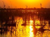 Puesta del sol anaranjado oscuro que refleja en el río Zambezi imágenes de archivo libres de regalías