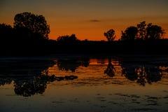 Puesta del sol anaranjado oscuro reflejada en el lago michigan con los árboles silueteados Imagen de archivo libre de regalías