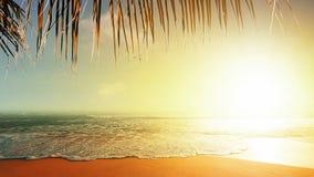 Puesta del sol asombrosa almacen de video