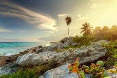 Puesta del sol asombrosa en la selva Fotografía de archivo libre de regalías