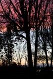 Puesta del sol asombrosa sobre ciudad Foto de archivo libre de regalías