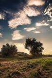 Puesta del sol azul Fotos de archivo libres de regalías