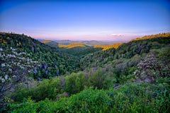 Puesta del sol azul de las montañas apalaches del verano de Ridge Parkway Imágenes de archivo libres de regalías