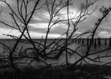Puesta del sol blanco y negro Imagen de archivo libre de regalías