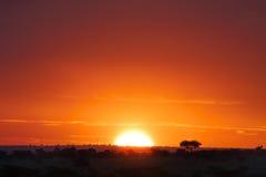 Puesta del sol borrosa colorida fotografía de archivo libre de regalías