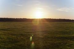 Puesta del sol brillante en el campo verde Fotografía de archivo libre de regalías